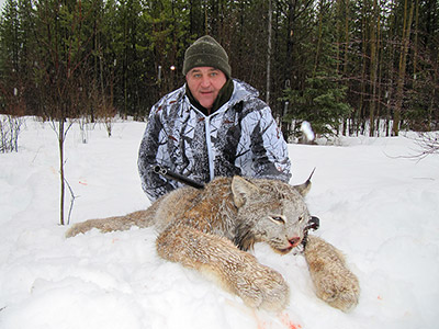Canadian Lynx Hunt