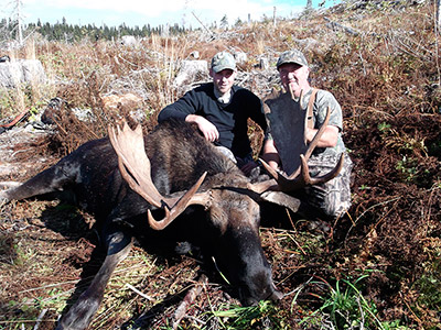 Moose Hunt in BC